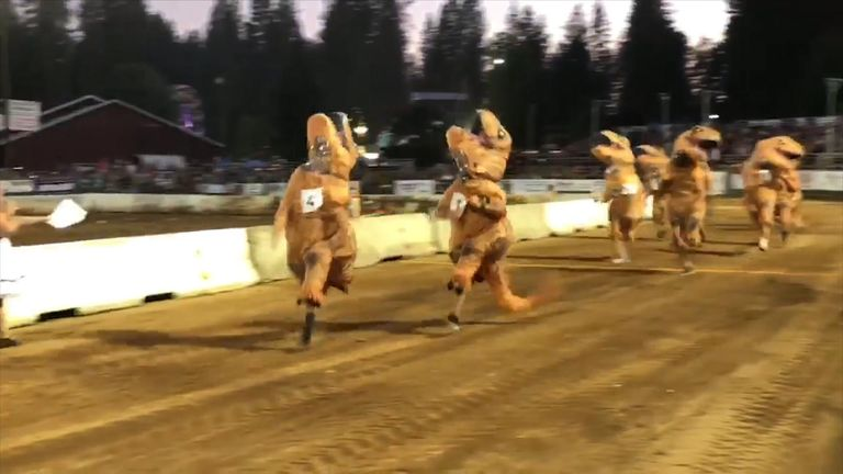 First respondenrs take part in a T-Rex race.