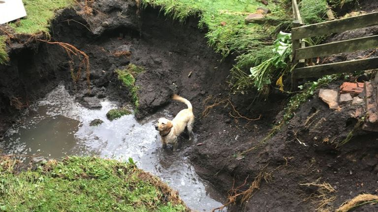 Picture taken with permission from the Twitter feed of @julietdunlop of a dog playing in flood damage in Poynton, Cheshire, where a major incident was declared late on Wednesday after heavy rainfall caused severe flooding. PRESS ASSOCIATION Photo. Picture date: Thursday August 1, 2019. See PA story WEATHER Rain. Photo credit should read: Juliet Dunlop/Good Morning Britain/PA Wire NOTE TO EDITORS: This handout photo may only be used in for editorial reporting purposes for the contemporaneous ill