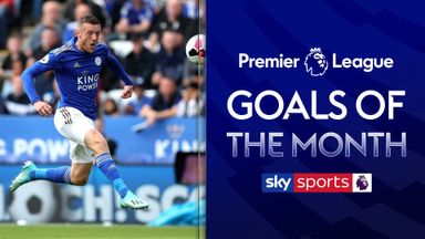Premier League Goals of the Month