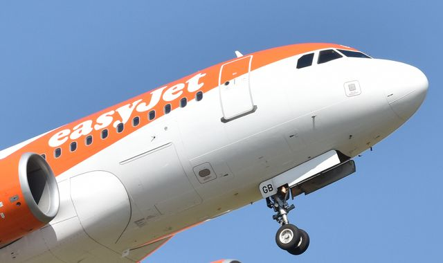 EasyJet to offset carbon emissions from all flights by planting trees
