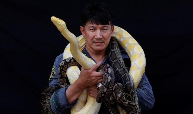 Saving humans and beasts: Firefighter Pinyo Pukpinyo is also Bangkok's top snake catcher