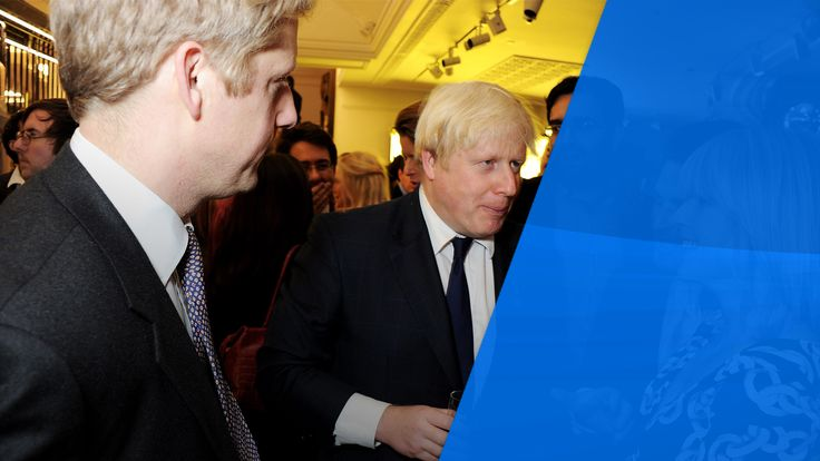 The Johnson brothers had worked together in cabinet