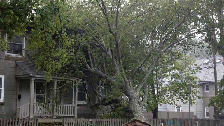 A tree rests against a house during the arrival of Hurricane Dorian in Halifax, Nova Scotia, Canada September 7, 2019.  REUTERS/John Morris