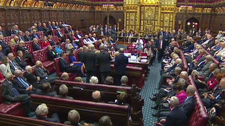 Shortly before 1.30am, the government announced it was dropping its opposition to the bill, allowing Lords to adjourn