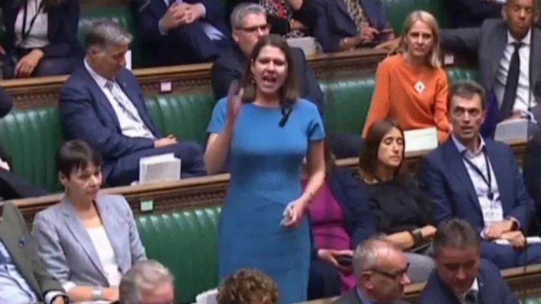 The unidentified MP can be heard heckling  the Liberal Democrats leader as she stood to deliver a speech in the Commons