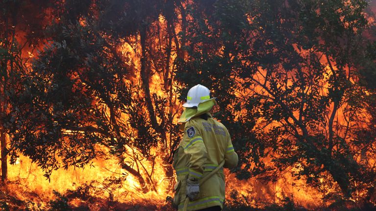 Firefighters battle bushfires in Angourie, northern New South Wales, Australia, September 10, 2019