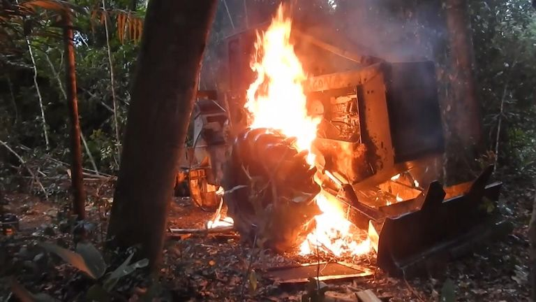 Local tribal warriors spotted loggers cutting trees, so they intervened, letting the loggers flee before burning their machinery
