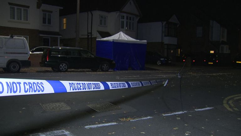 A teenager has been arrested on suspicion of murder after police were called to a car crash and fight in Watford