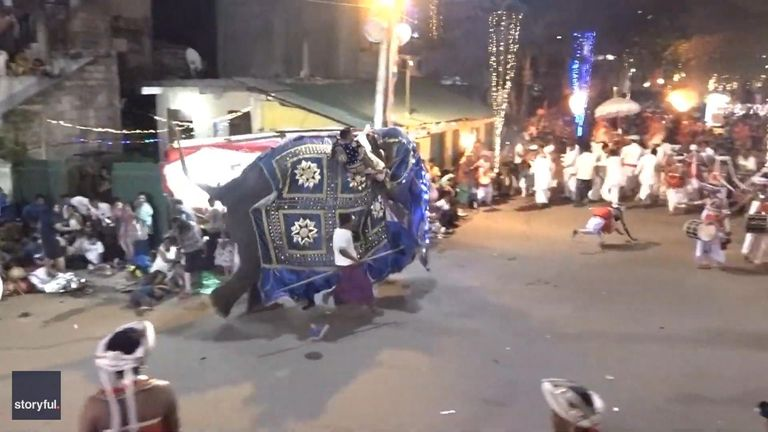 At least 17 people were injured when two elephants went on a rampage during a religious parade in Sri Lanka