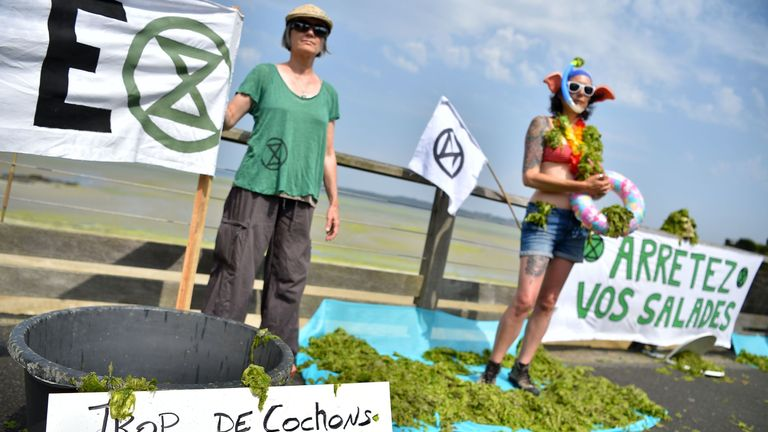 Activists protest against the toxic algae at Vallais beach