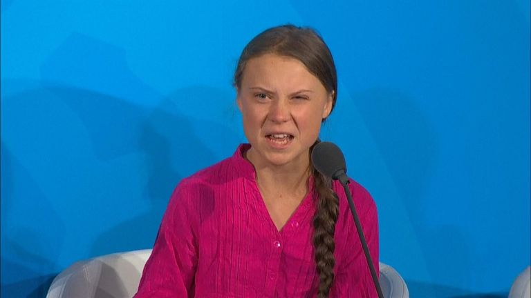 "In an emotional speech at a UN climate change summit, Greta Thunberg warns that the human race is ""at the beginning of a mass extinction"""