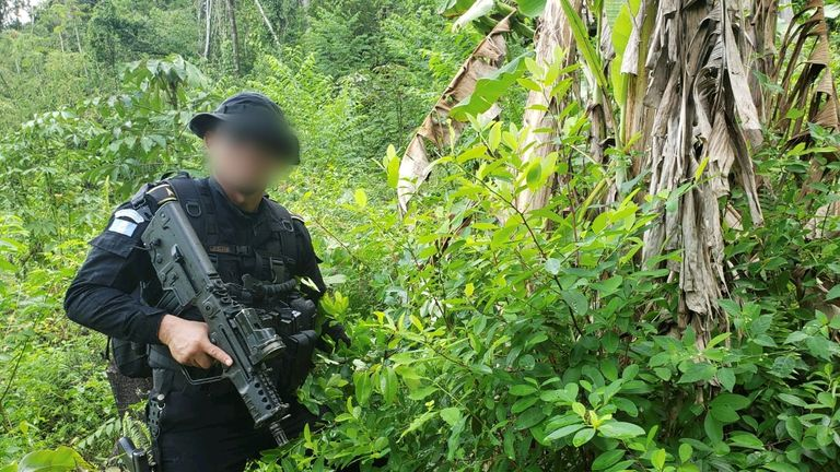 An agent of the Guatemalan National Civil Police pictured next to coca plants