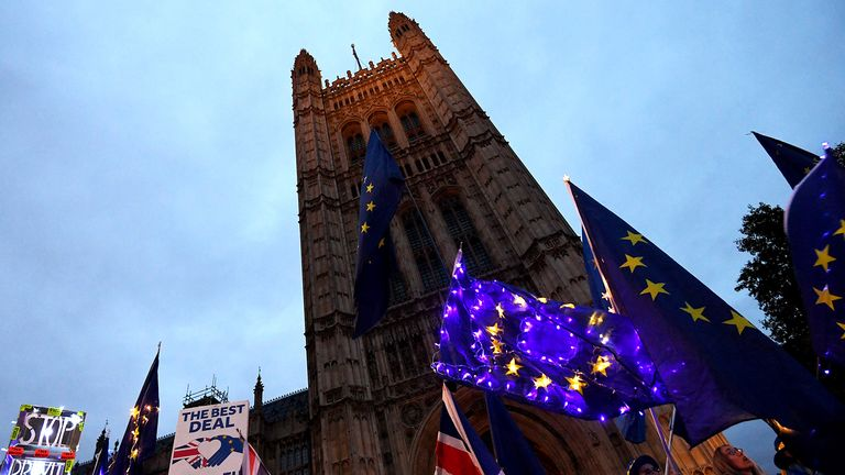 Protesters outside the Houses of Parliament. Pic: Facundo Arrizabalaga/EPA-EFE/Shutterstock