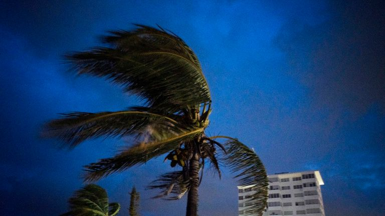 Strong winds move the palms of the palm trees at the first moment of the arrival of Hurricane Dorian in Freeport, Grand Bahama, Bahamas, Sunday Sept. 1, 2019. (AP Photo / Ramon Espinosa)