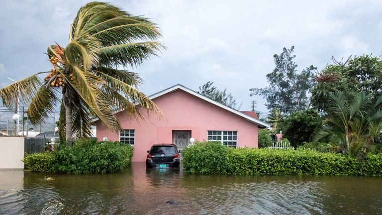 A palm tree bends in the wind next to a flooded street after the effects of Hurricane Dorian arrived in Nassau, Bahamas, September 2, 2019. Pic: REUTERS/John Marc Nutt