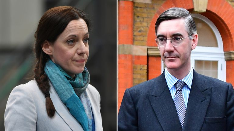 Annunziata Rees Mogg stood (and won) as a candidate for the Brexit Party