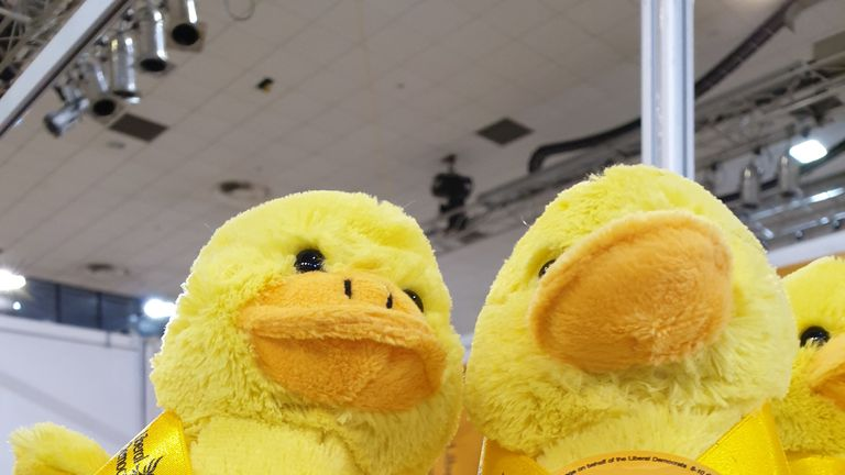 Ducks on sale at Lib Dem conference 2019