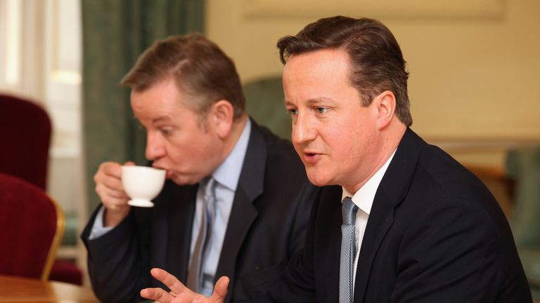 David Cameron refers to Michael Gove as 'mendacious' in his book
