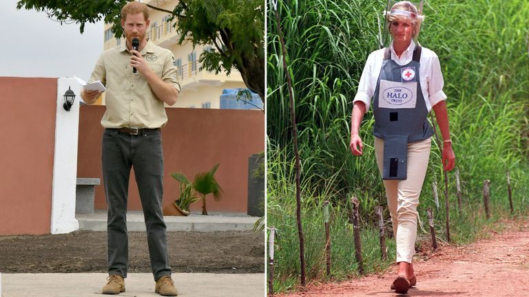 Prince Harry, Duke of Sussex, delivers a speech near the Diana Tree on day five of the royal tour of Africa, in Huambo, Angola