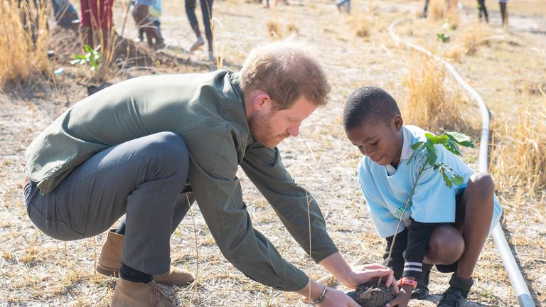 Prince Harry takes part in a tree-planting event with schoolchildren in Botswana
