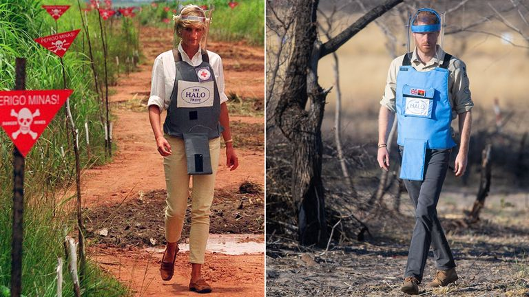 Diana, Princess of Wales and Price Harry in Angola