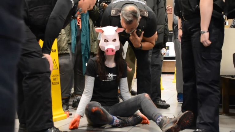 Vegan activist Dylan Roffey wearing a pig mask during a protest in a McDonald's