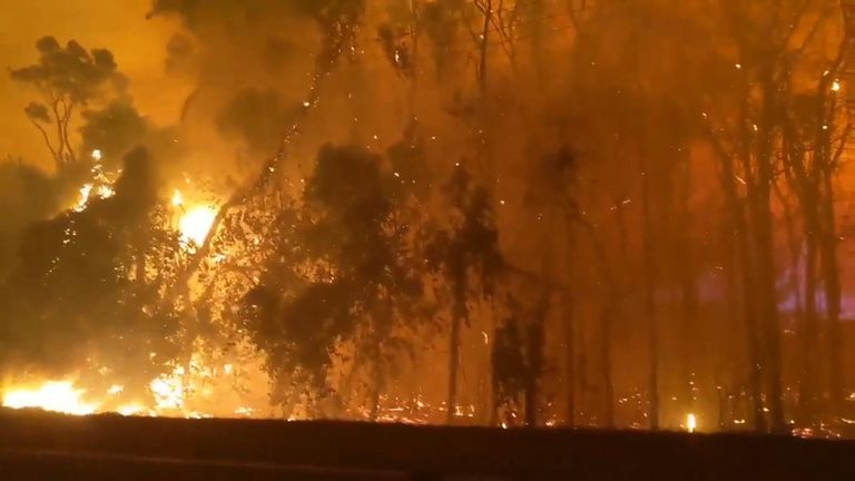 Firefighters continued to battle a large blaze at Peregian Springs in Queensland, on as police evacuated local residents
