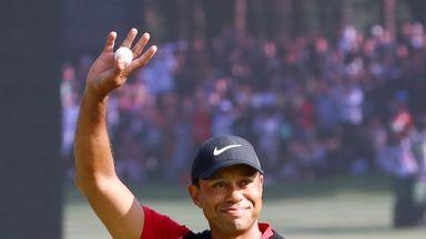 Tiger's unforgettable year