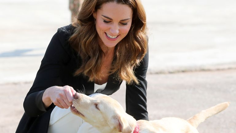 ISLAMABAD, PAKISTAN - OCTOBER 18:  Catherine, Duchess of Cambridge with golden labrador puppies Salto and Sky as she visits an Army Canine Centre with Prince William, Duke of Cambridge, where the UK provides support to a programme that trains dogs to identify explosive devices, during day five of their royal tour of Pakistan on October 18, 2019 in Islamabad, Pakistan. (Photo by Chris Jackson - Pool/Getty Images)