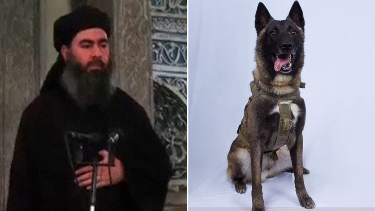 Abu Bakr al Baghdadi and dog injured in US raid