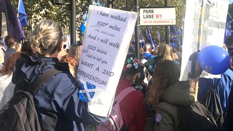 Pro EU protesters march in London. Pic: Janice Riddle