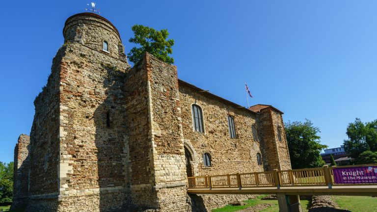 The Colchester Castle Sycamore, which sits atop of the Grade I listed building in Essex, came second