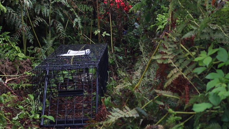 Farmers say the cull is working. Pic: ZSL