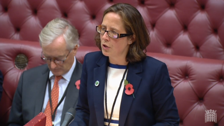 Baroness Evans of Bowes Park moved the bill should pass. Pic: House of Lords