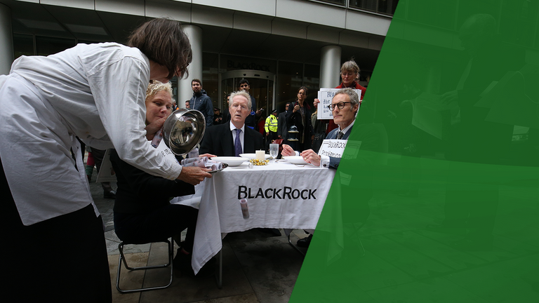BlackRock is the world's biggest investor in renewable energy