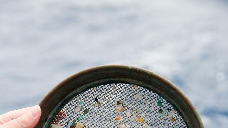 Microplastics collected during a recent trip