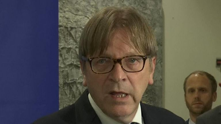 Guy Verhofstadt says reaction to latest Brexit proposal 'not positive'