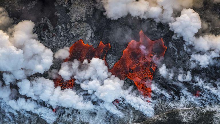 Pic: Luis Vilarino/Wildlife Photographer of the Year