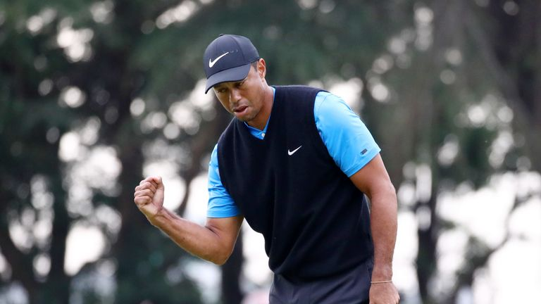 Tiger rises from 'most challenging' career phase with record win