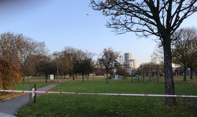 Three arrested after teenager stabbed near east London park