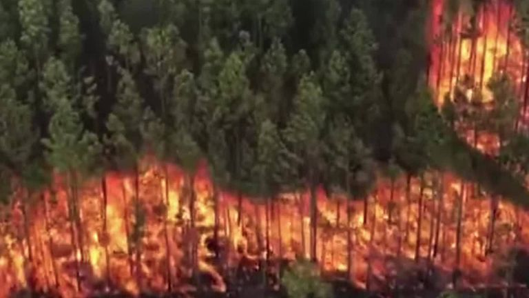 Forest fire spreads 70,000 acres