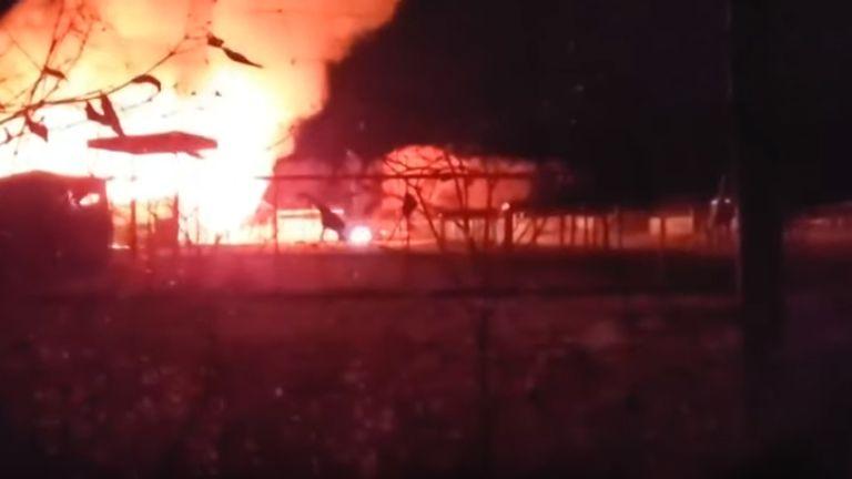 A giraffe tries to escape the fire. Pic: WKYC