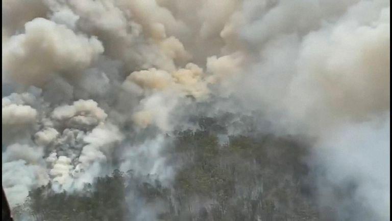 New South Wales premier Gladys Berejiklian has declared a week-long state of emergency