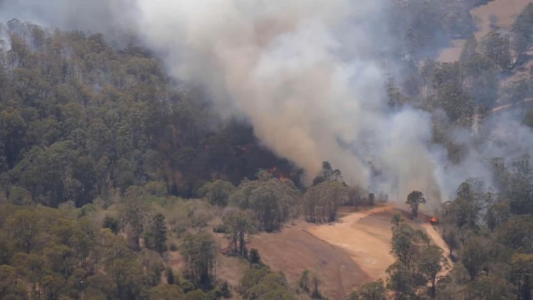 Thick smoke spirals from blazing bush in Taree, New South Wales
