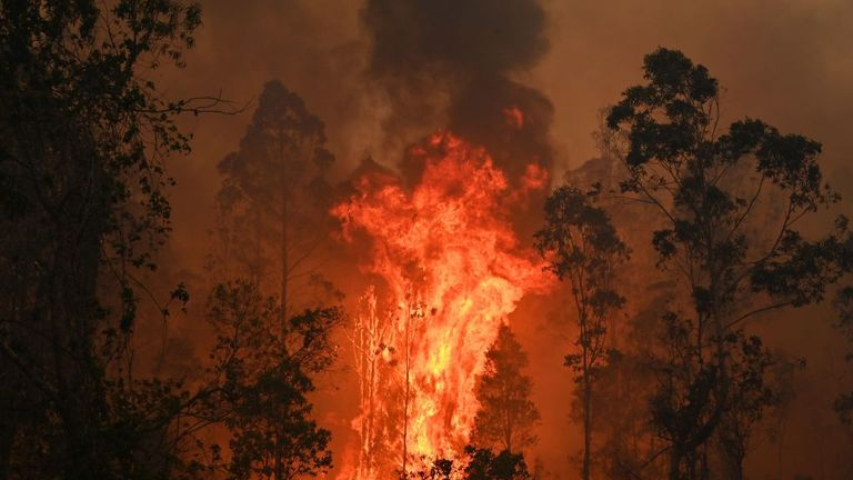 Bushfires rage in New South Wales