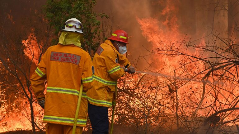 Hundreds of firefighters have been tackling the fires across the country