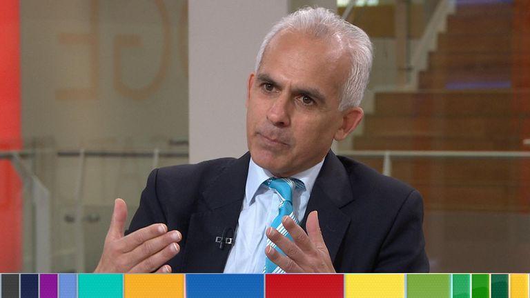 Ben Habib, Brexit Party MEP