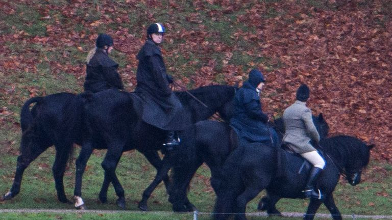Pic: Ben Cawthra/LNP