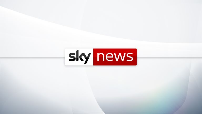 Sky News logo thumbnail