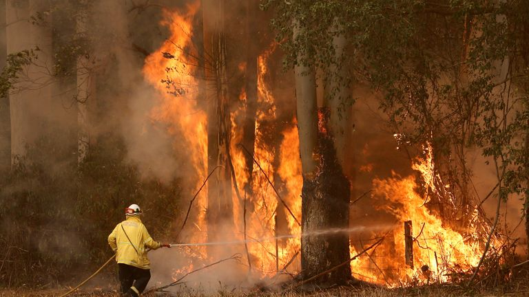 A firefighter tackles a blaze south of Taree, about 210 miles north east of Sydney